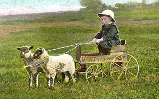sheepcarriage.jpg